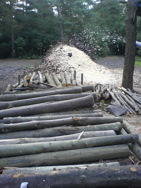 Sourcing Wood for Bridge Outdoor Structure - Forest Woodcraft bespoke Kent Carpentry and Joinery